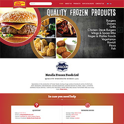 Netalia Frozen Food