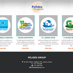 Pelides Group